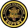 Логотип БОРУФТ